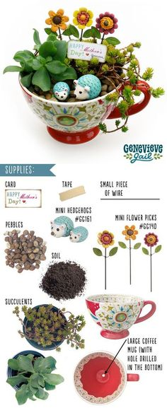 Teacup Mini Gardens Ideas to create your own Mini Fairy Terrarium Gardens with these miniature terrarium gardens, small water gardens, or combine the both.