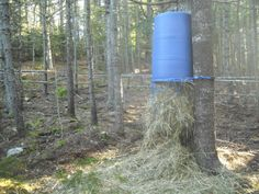 Home-made slow feeder for horses on the Paddock Paradise. Great for preserving hay supply and minimizing waste, smaller holes in the net would have been ideal here.