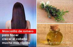 Mascarilla de romero para hacer crecer el cabello mucho más rápido Hair Remedies, Forever Young, Perfume Bottles, Hair Treatments, Nature, Tips, Beauty, Hair Health, Hair Beauty