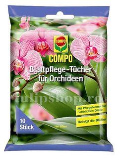 Pret: 15 lei/pachet Servetelele umede pentru orhidee au rolul de a curata frunzele de orhidee, dar si de a fertiliza prin substantele continute. Pachetul contine 10 servetele umede. Folositi servetelele umede pentru a indeparta praful, petele de calcar sau grasimi de pe frunzele orhideelor. Praful, calcarul si alte depuneri blocheaza asimilarea substantelor nutritive si planta isi pierde vitalitatea si stralucirea. Peta, Facial, Personal Care, Orchids, Cleaning, Nursing Care, Facial Treatment, Self Care, Facial Care