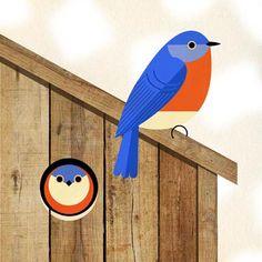 Scott Partridge - illustration - bluebird house