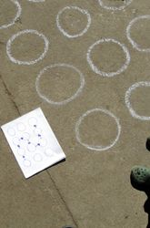 Explore Memory Pathways.  This sounds like really fun.  A great outdoor game to play with the kids in the neighborhood that helps with memory, focus and concentration.
