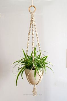 Incredible Handmade and beautiful macrame plant hanger. This plant holder combines braided cotton and beads to make a retro looking plant holder.  The total  The post  Handmade and beautiful macra ..