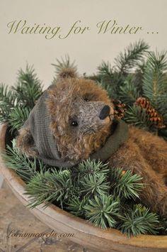 Teddy awaits winter . . .