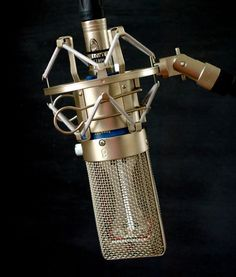 Michael Joly Modded Apex205 Ribbon Mics (2)