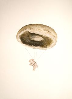 Watercolour Mushroom Parachute. Kathleen Murphy all rights reserved.