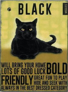 Black Cat Metal Sign Will brin your home lots of good luck BOLD FRIENDLY Great fun to play hide and seek with always in the best dressed catagory I Love Cats, Crazy Cats, Cool Cats, Black Cat Good Luck, Black Cat Art, Black Cats, Black Kitty, Cat Site, Cat Posters