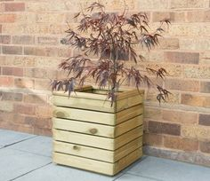 Forest Garden Linear Square Planter - x Wooden Garden Planters, Wooden Planter Boxes, Tall Planters, Square Planters, Cement Planters, Garden Pots, Garden Ideas, Exterior Wood Stain, Plastic Sheds