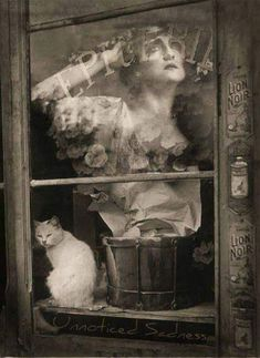 Brassaï.Lyda Borelli, Cat in Window, 1938