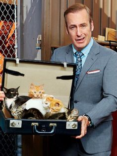 Better Call Saul Bob Odenkirk has a case load of kittens :) Serie Breaking Bad, Better Call Saul, Saul Goodman, Vince Gilligan, Enemy Of The State, Elvis And Priscilla, Cat People, Larp, In This World