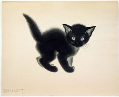 adorable black kitten picture by Clare Turlay Newberry I Love Cats, Crazy Cats, Cool Cats, Black Cat Art, Black Cats, Black Kitty, Image Chat, Photo Chat, Cat Drawing