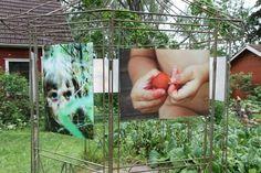 Kuhmalahden taidepappila, 2012 My Arts, Artist, Plants, Planters, Plant, Amen, Artists, Planting, Planets