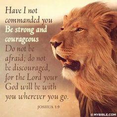 Joshua quote