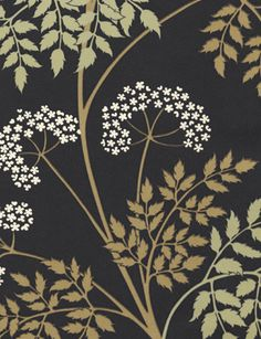 Cowparsley wallpaper from Sanderson - DOPWCO-101