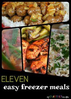 Eleven Easy Freezer Meals!