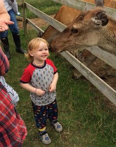 Meeting and feeding Red Deer at Farmer Palmer's Farm Park in Poole | Dorset | UK  Great ideas for kids days out in Dorset