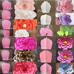 Modelos de flores gigantes de papel - Giant flower template and what the flower looks like Giant Paper Flowers, Diy Flowers, Fabric Flowers, Wedding Flowers, Flower Diy, Happy Flowers, Flower Petals, Diy Paper, Paper Crafts