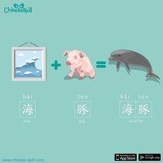 海豚 hái tún Delfin