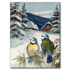 """Résultat de recherche d'images pour """"oiseaux en hiver"""""""
