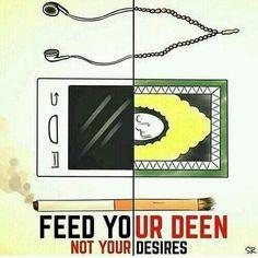 Feed ur DEEN...
