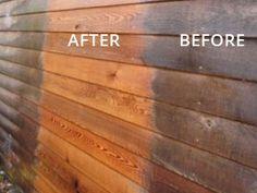 how to clean mold off cedar siding