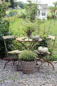 Gardening Autumn - Idea for area just off patio (gravel) where the grass wont grow. Would keep the house a little cleaner with less sand. - With the arrival of rains and falling temperatures autumn is a perfect opportunity to make new plantations Garden Cottage, Home And Garden, Garden Living, Rose Cottage, Garden Spaces, Dream Garden, Garden Inspiration, Garden Ideas, Backyard Landscaping