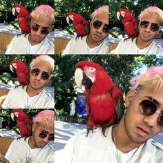 Cnco Richard, Memes Cnco, Funny Me, Insta Story, Monkey, Crushes, Cute, Love Of My Life, Quartos