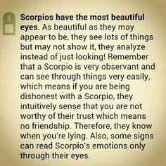 Scorpions beautiful Eyes