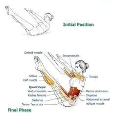 Abdominal Exercises for Spinal and Core Movement and Stabilization: Final Exercise –Teaser - The Health Science Journal