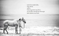 Pick my horse up first for he has carried me through heaven and hell
