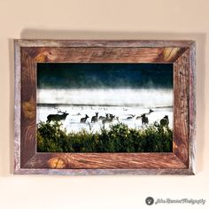 MOST POPULAR  Wildlife Metal Art Print in Barn Wood Frame by PicturesFromHeaven, $185.00