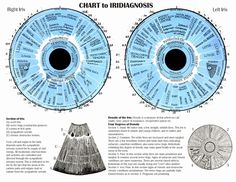 "Iridology: is an alternative medicine technique whose proponents claim that patterns, colors, and other characteristics of the iris can be examined to determine information about a patient's systemic health. Practitioners match their observations to iris charts, which divide the iris into zones that correspond to specific parts of the human body. Iridologists see the eyes as ""windows"" into the body's state of health.  Gwen's Herb Shop  1061 Old Abingdon Hwy # 4  Bristol, VA 24201  (276)…"