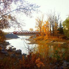 """Fall colours #autumn #peacebridge #yyc #sharecalgary #capturecalgary #instaedit""  Instagram photo by missautumnlover"