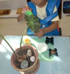 How can Montessori fit into your family?