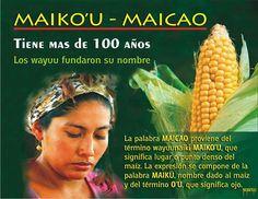 Maicao. La Guajira Colombia