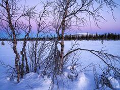 Lapland, Laponia, Stubba NR, Sweden