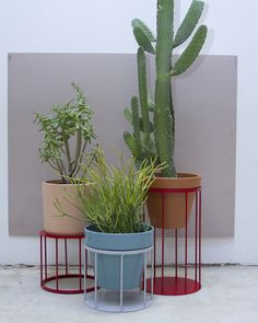 Porch at Paul Loya Gallery — Eric Trine