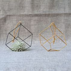 Image result for plant hangers