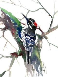 Downy Woodpecker Artwork , original watercolor painting, woodpecker art, woodpecker painting, watercolor birds, USA, by ORIGINALONLY on Etsy