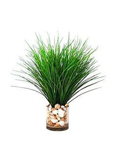 Creative Displays Faux Fresh Grass in a Glass Vase with Seashells