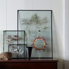 Floating Pressed Botanicals from Shane Powers new book! Find out how to create this for yourself at https://www.onekingslane.com/live-love-home/shane-powers-bringing-the-outdoors-in/#