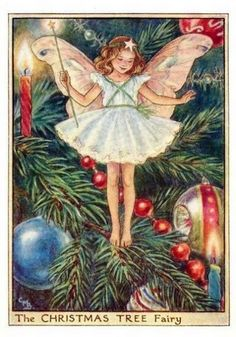 Christmas Tree Flower Fairy » Flower Fairy Prints- Vintage Fairy Prints by Cicely Mary Barker for sale