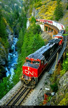 Canada - Twin GE of the Canadian National Railway at the breathtaking Cheakamus Canyon, Squamish, British Columbia, Canada. Train Car, Train Tracks, Train Rides, Canadian National Railway, Canadian Pacific Railway, Locomotive, British Columbia, Railroad Pictures, Railroad Photography