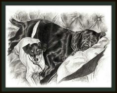 Buddy & Cocoa Sketch ~ Hand drawn pet portraits in graphite pencil. See more at http://www.gensart.net #lab #dog art