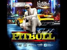 Pit Bull-the best of pitbull part 2 Dj wille buddha