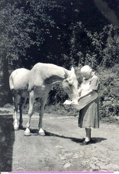 Official FNS photo, Mrs Breckinridge feeding her horse, Wendover, KY  https://www.frontiernursing.org/B-B/Bed-Breakfast.shtm