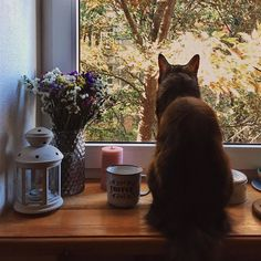 """☕️❤️ #morningslikethese ▫️ Затишок і не інакше ❤️"""