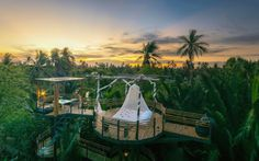 Exotic solar and wind-powered Bangkok Tree House resort is a m...