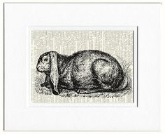 rabbit I  vintage artwork printed on page from old by FauxKiss