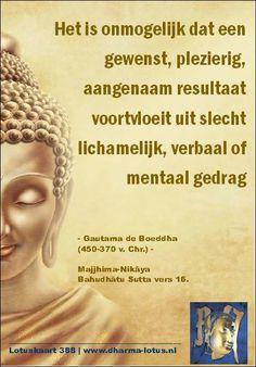 """Naast de wetmatigheid van """"oorzaak en gevolg"""" beschrijft Gautama de Boeddha ook dat de voortzettende lijn van oorzaak en gevolg altijd verloopt middels begeerte of aversie of compassie. Een oorzaak op aversie kan nooit een gevolg op begeerte veroorzaken. http://www.dharma-lotus.nl/lotuskaarten.asp"""